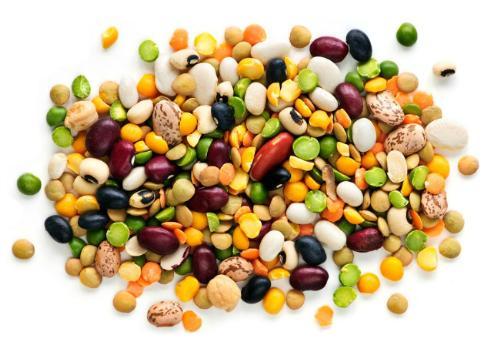 beans 12145656 Những loại siêu thực phẩm cho trẻ sơ sinh và trẻ mới biết đi