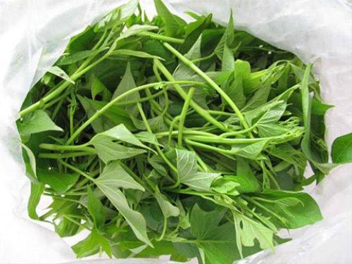 Rau khoai lang mang lai nhieu cong dung than ky va bat ngo