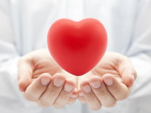 Tinh dầu bơ bảo vệ tim mạch