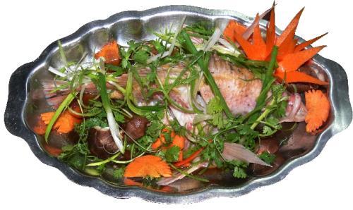 Image result for cá điêu hồng hấp nấm