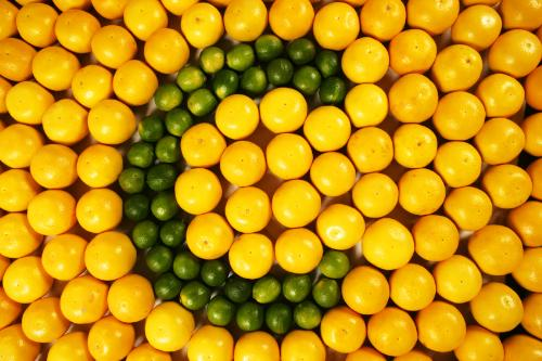 Dau da day co nen bo sung vitamin C