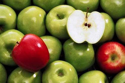 hat tao le 181743475 Những loại quả ngon nhưng hạt lại rất độc hại