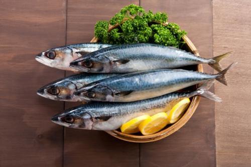 8 loai ca giau axit beo omega3 nhat3 17115937 8 loại cá rất giàu axit béo omega 3 nhất