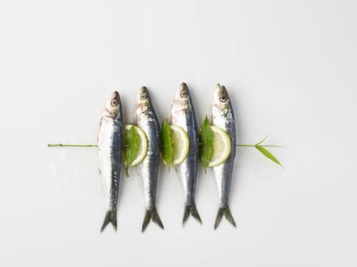 8 loai ca giau axit beo omega3 nhat4 17115531 8 loại cá rất giàu axit béo omega 3 nhất