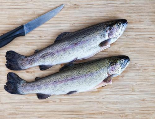 8 loai ca giau axit beo omega3 nhat7 17116859 8 loại cá rất giàu axit béo omega 3 nhất