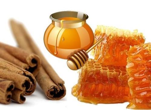 Mật ong và quế là sự kết hợp tuyệt vời giúp bạn giảm cân và trị nhiều bệnh khác nhau.