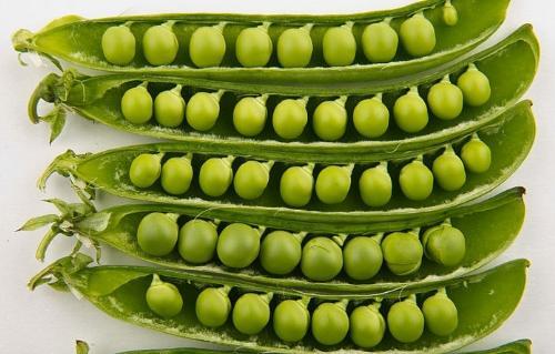 dau lang 251551223 Top 10 loại thực phẩm đem lại sức khỏe và may mắn cho bạn