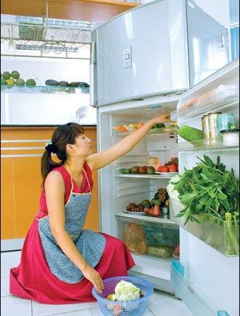 Cần vệ sinh tủ lạnh thường xuyên để vi khuẩn không sinh sôi và phát tán.