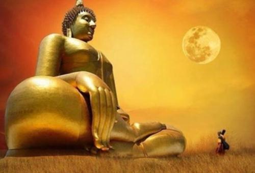 Giúp bạn tìm được hướng đi của cuộc đời  qua 14 câu trả lời của Đức Phật