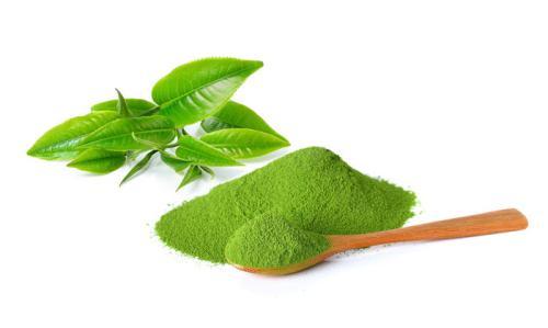 Bột trà xanh giúp chống lão hóa, sát khuẩn