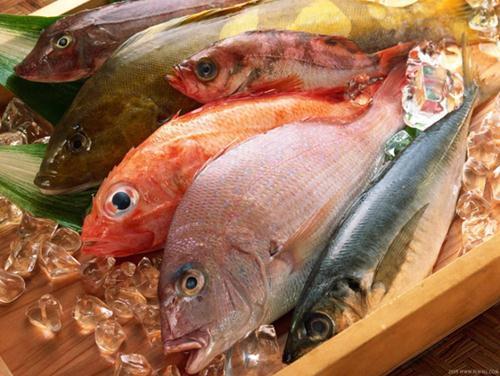 ca nao 201634921 8 loại thực phẩm giúp tăng cường trí nhớ rất hiệu quả