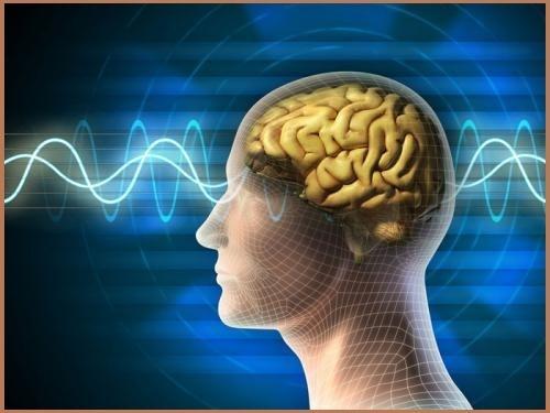 Dung nhiều thuốc bổ não sẽ làm tổn hại hệ thần kinh, thậm chí là teo não