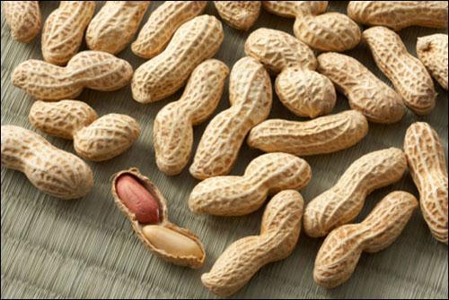 Top 7 loai thuc pham quen thuoc giau protein ban khong nen bo qua