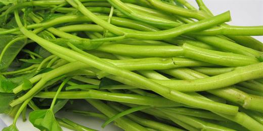 5 sai lam khi xao rau 90% ba noi tro mac phai