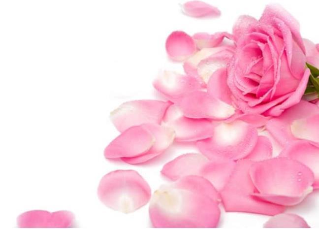 Top 5 loai mat na hoa lam cham qua trinh lao hoa, cho ban lan da tuoi tre nhu moi doi muoi