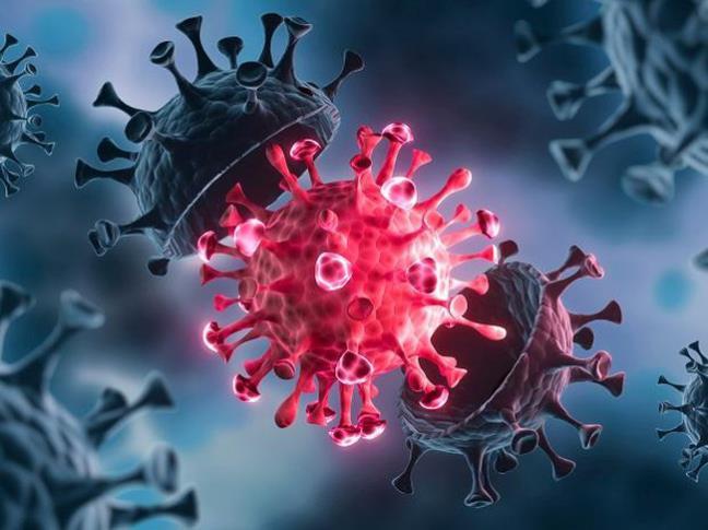 Nha san xuat Pfizer vua dua ra du doan ve bien the COVID-19 va mui vaccine bo sung