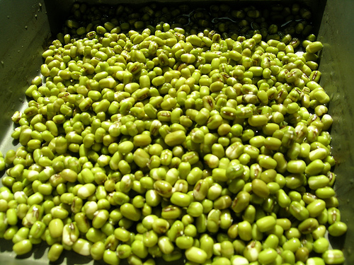 Đậu xanh giàu hàm lượng vitamin B1, B2, B5, B6, B10,… giúp da nhẵn mịn.