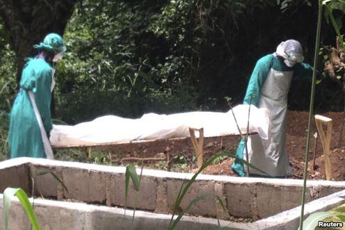 Virus Ebola gây chết nhiều người ở châu Phi